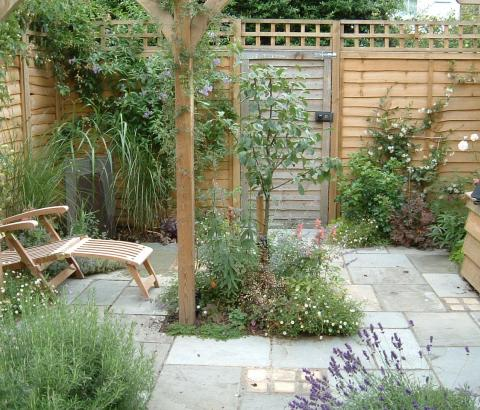 Courtyard Garden with planting and pergola.